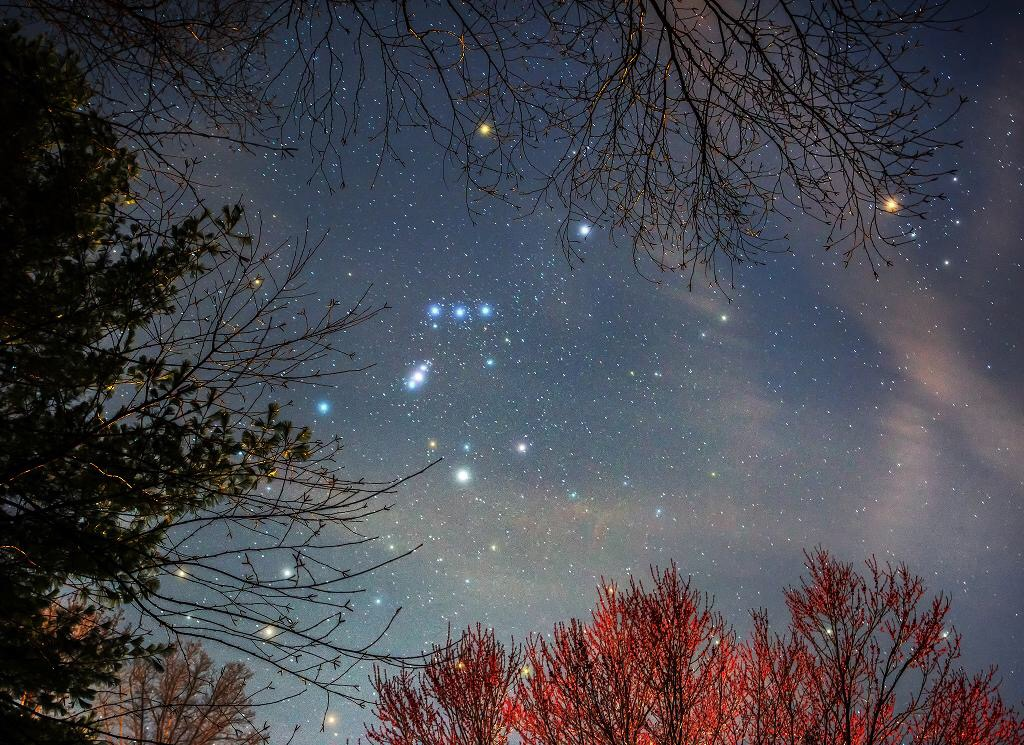 a orion